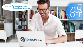 Curso On Line de WordPress Superior